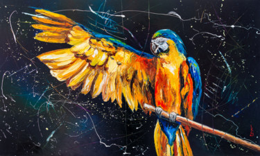 Freedom for parrots !